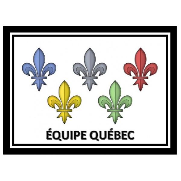 Situation de validation - Équipe Québec