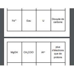 Différencier atome, molécule et ion