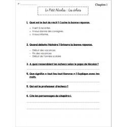 Questionnaire Le Petit Nicolas : Les echecs