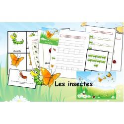 Fiches d'activités: Les insectes