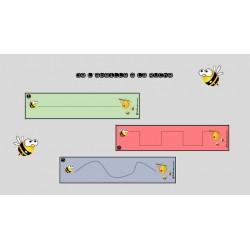 De l'abeille à la ruche - Graphisme