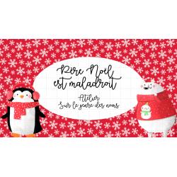 Atelier Noël : genre du nom/dét/adjectif