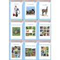 Série Bleue : Les livres SCRIPT