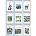 Série Bleue : Les livres CURSIF
