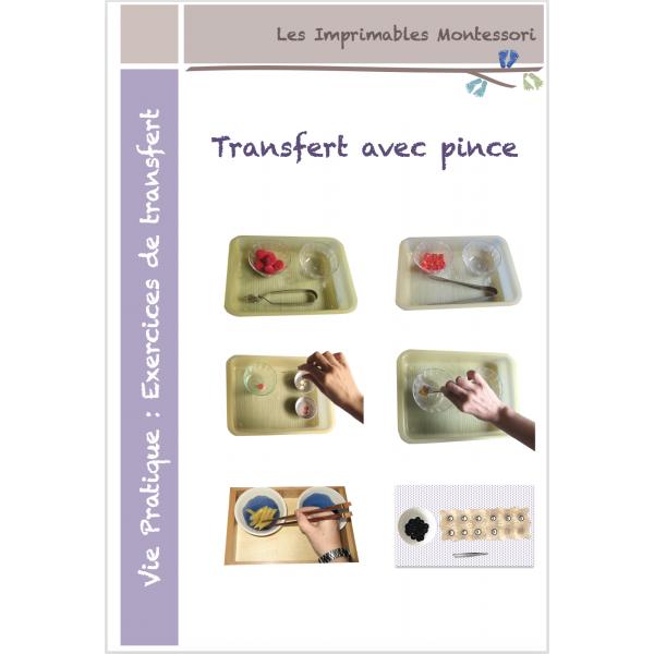 Vie pratique Montessori : Transfert avec pince