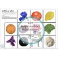 Cartes de Nomenclature Montessori : Les Couleurs