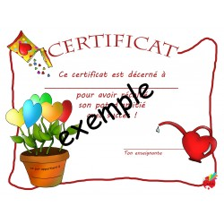 certificat je cultive l'amitié