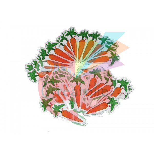 La chasse aux carottes !