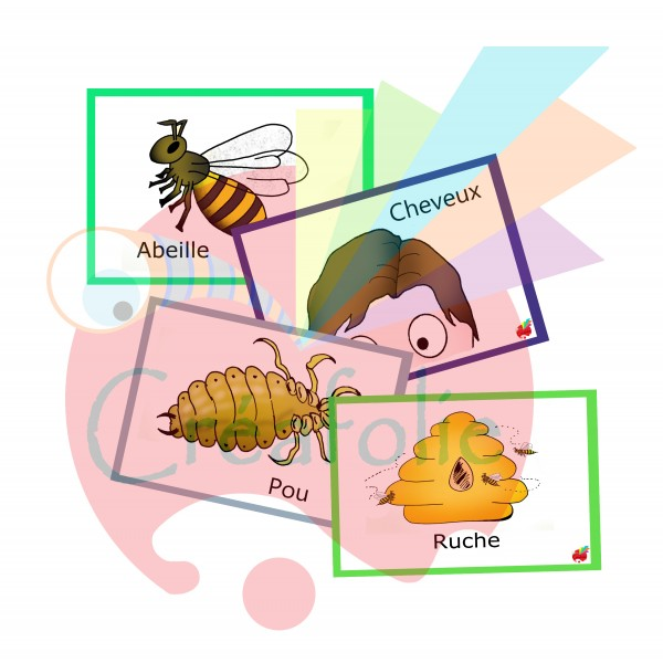 Associe-insectes