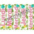 Calendrier : Flamants roses