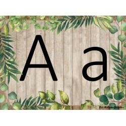Alphabet - fougère