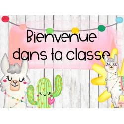Affiche classe- Alpaga