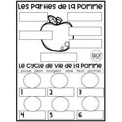 Le temps des pommes (français et sciences)
