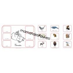 Carte animaux du Canada