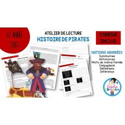 Lecture-Histoire de pirates