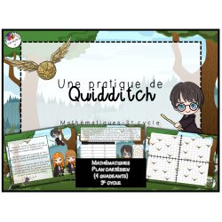Une pratique de Quidditch