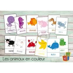 Les animaux en couleur