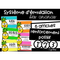 Système d'émulation - les ananas
