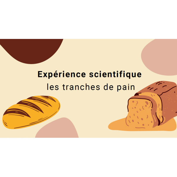 Expérience: les tranches de pain