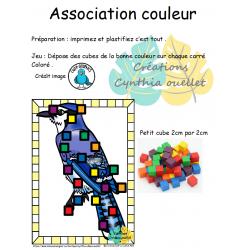 association petit cube