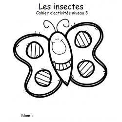 cahier d'Activité  insectes niveau 3 noir/blanc