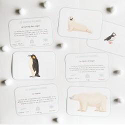 LECTURE - Les animaux polaires