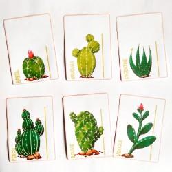 MESURER AVEC LA RÈGLE - Cactus