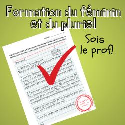 Formation du féminin et du pluriel - Sois le prof!