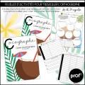 Cocographe-Apprentissage de l'orthographe