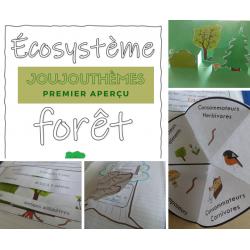 Cahier interactif- Écosystème de la Forêt