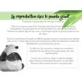 Probabilités: Sauvons les pandas