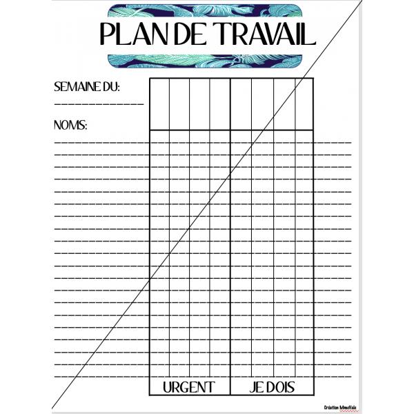 PLAN DE TRAVAIL: SUIVI