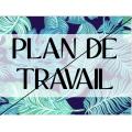 PLAN DE TRAVAIL