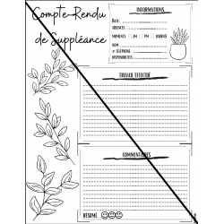 Compte-Rendu Suppléance