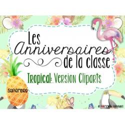Ensemble pour anniversaires - Cliparts tropicaux