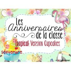 Ensemble pour anniversaires - Cupcakes tropicaux