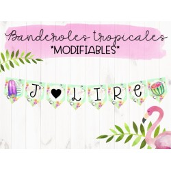 Banderoles tropicales modifiables