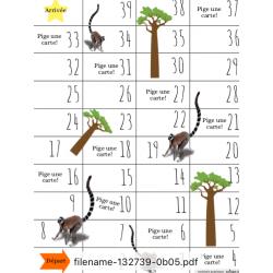 Lémures et Baobabs