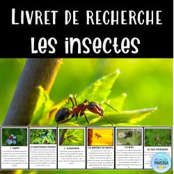Livret de recherche animaux: Les insectes