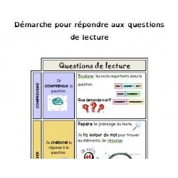 Questions de lecture  - Stratégies