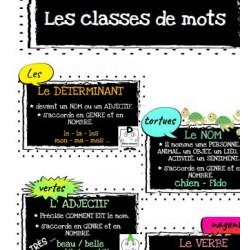 Les classes de mots - Affiches et exercice