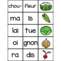Relie les syllabes et l'image (Fleurs et jardin)