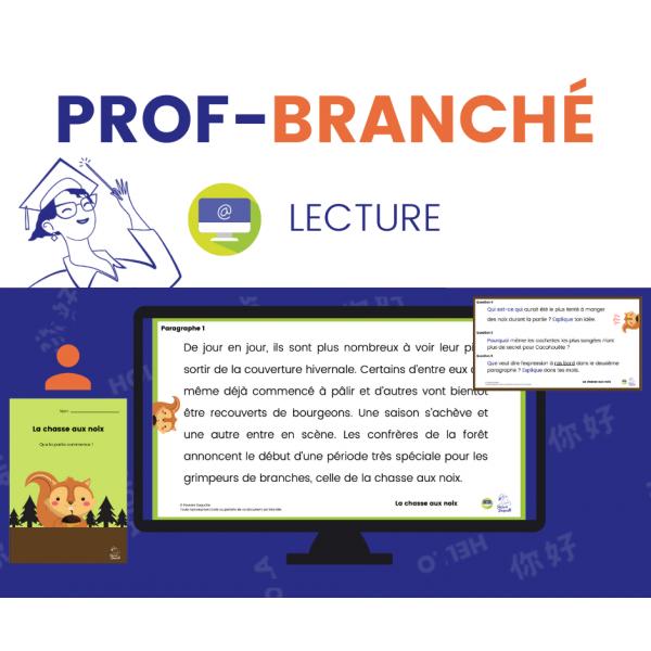 Compréhension de Lecture À DISTANCE - PRINTEMPS 3