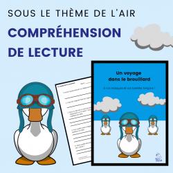 Compréhension de Lecture AIR - Texte Narratif