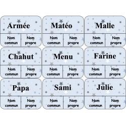 Cartes à pinces nom propre nom commun niveau 2