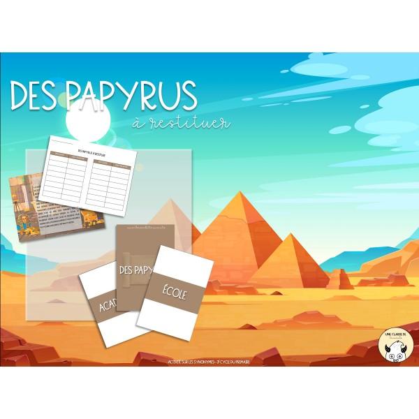 Des papyrus à restituer