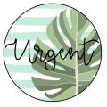 Plan de travail - Plantes turquoise