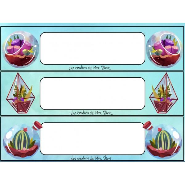 Ensemble identificateurs bureaux/casiers cactus