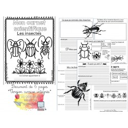 Carnet scientifique insectes 1er cycle