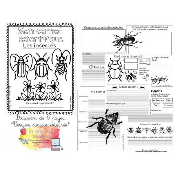 Carnet scientifique insectes 1er cycle